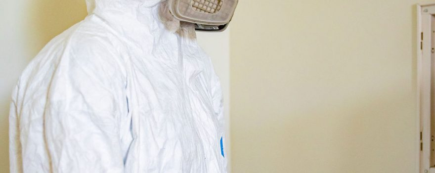 North Carolina Mold Services